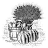 Todavía de la cosecha vida retra blanco y negro ilustración del vector