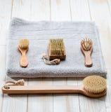 Todavía de la higiene vida respetuosa del medio ambiente con los accesorios de cepillado secos Fotografía de archivo libre de regalías