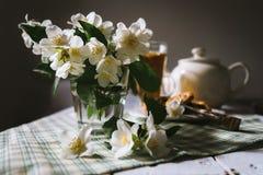 Todavía de la mañana vida con las flores frescas del jazmín Foto de archivo