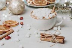 Todavía de la Navidad la vida con cacao, las melcochas, el canela y el abeto ramifica brillante y festivo Imagenes de archivo