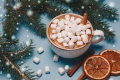 Todavía de la Navidad la vida con cacao, las melcochas, el canela y el abeto ramifica en backgroung azul brillante y festivo Fotos de archivo libres de regalías
