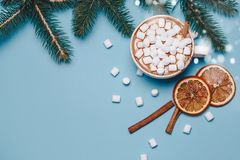Todavía de la Navidad la vida con cacao, las melcochas, el canela y el abeto ramifica en backgroung azul brillante y festivo Copy Fotos de archivo libres de regalías