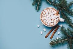 Todavía de la Navidad la vida con cacao, las melcochas, el canela y el abeto ramifica en backgroung azul brillante y festivo Copy Foto de archivo libre de regalías
