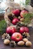 Todavía de la Navidad vida con las manzanas, las nueces y los conos del pino en ventana de madera Imágenes de archivo libres de regalías