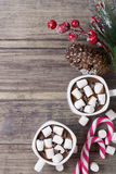 Todavía de la Navidad vida - dos tazas de chocolate caliente con la melcocha, los caramelos y la rama del abeto con las bayas Fotos de archivo libres de regalías