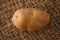 Todavía de la patata endecha del plano del fondo del saco de la vida Imagen de archivo libre de regalías