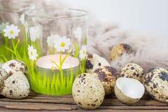 Todavía de la primavera vida con los huevos de codornices Foto de archivo libre de regalías