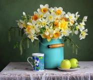 Todavía de la primavera vida con los narcisos y las manzanas verdes Fotografía de archivo