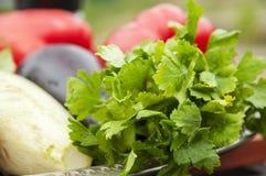 Todavía de la verdura vida - perejil, berenjena, calabacín y tomates Foto de archivo libre de regalías