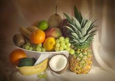 Todavía de las frutas vida exótica Fotografía de archivo libre de regalías