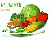 Todavía de las verduras vida stock de ilustración