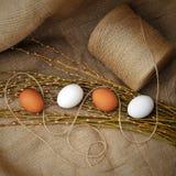 Todavía de Pascua la vida natural con los huevos y el sauce ramifica en la arpillera Fotos de archivo