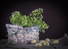 Todavía de Pascua vida con la cesta, las pequeñas flores blancas, las lanas y qua Foto de archivo