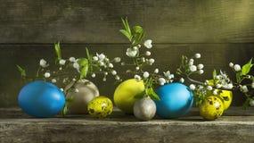 Todavía de Pascua vida con los huevos coloridos en un viejo fondo de madera Fotos de archivo