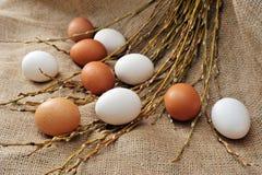 Todavía de Pascua vida con los huevos y el sauce naturales de los lobos marinos de las ramas Fotografía de archivo