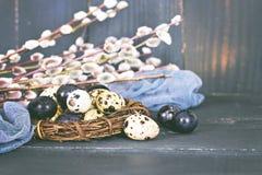 Todavía de Pascua vida Huevos de Pascua Imagen de archivo