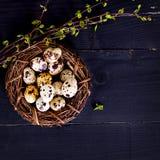Todavía de Pascua vida Huevos de Pascua Imágenes de archivo libres de regalías