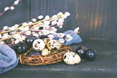 Todavía de Pascua vida Huevos de Pascua Fotografía de archivo libre de regalías
