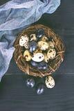Todavía de Pascua vida Huevos de Pascua Imagenes de archivo