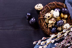 Todavía de Pascua vida Huevos de Pascua Fotos de archivo