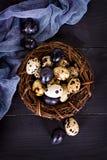 Todavía de Pascua vida Huevos de Pascua Foto de archivo