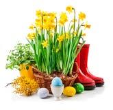 Todavía de Pascua vida a partir del huevo y de la primavera Foto de archivo
