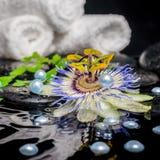 Todavía del balneario la vida de la flor de la pasionaria, ramas, apiló las toallas, z Foto de archivo libre de regalías