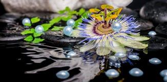 Todavía del balneario la vida de la flor de la pasionaria, ramas, apiló las toallas, z Fotografía de archivo libre de regalías