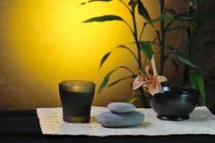 Todavía del balneario vida con el bambú Fotografía de archivo libre de regalías