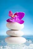 Todavía del balneario vida con la orquídea rosada y el ZEN Stone blanco Imagen de archivo