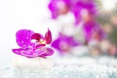Todavía del balneario vida con la orquídea rosada y el ZEN Stone blanco Imagenes de archivo