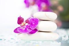 Todavía del balneario vida con la orquídea rosada y el ZEN Stone blanco Imágenes de archivo libres de regalías