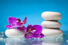 Todavía del balneario vida con la orquídea rosada y el ZEN Stone blanco en un serenit Imagenes de archivo