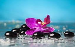 Todavía del balneario vida con la orquídea rosada y el ZEN Stone negro Imagen de archivo libre de regalías
