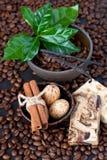 Todavía del balneario vida con los granos de café en fondo oscuro Foto de archivo libre de regalías