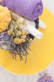 Todavía del balneario vida con los ingredientes naturales Imagen de archivo