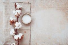 Todavía del balneario vida con los productos para el cuidado de la piel de la belleza Foto de archivo libre de regalías