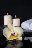 Todavía del balneario vida de la orquídea amarilla de la flor, phalaenopsis con descensos Fotografía de archivo