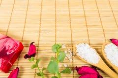 Todavía del balneario vida en el fondo de bambú Imagenes de archivo