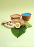 Todavía del balneario vida herbaria verde imagen de archivo libre de regalías