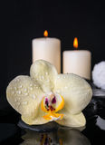 Todavía del balneario vida hermosa con la orquídea amarilla de la flor, phalaenopsis Foto de archivo
