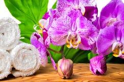 Todavía del balneario vida hermosa con la orquídea floreciente de la lila, piedra blanca Imágenes de archivo libres de regalías