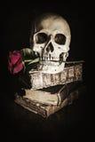Todavía del estilo vida oscura con un cráneo Foto de archivo