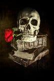 Todavía del estilo vida oscura con un cráneo Fotos de archivo