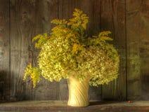 Todavía del estilo vida retra de flores secadas en florero Foto de archivo libre de regalías