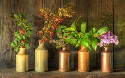 Todavía del estilo vida retra de flores secadas en floreros Fotografía de archivo libre de regalías