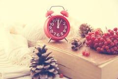 Todavía del invierno vida con el reloj rojo como símbolo del Año Nuevo, del cono del pino, de las bayas de serbal y del suéter he Foto de archivo libre de regalías