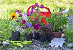 Todavía del jardín la vida con las herramientas, la regadera y el verano florece en el establecimiento de los potes Imagen de archivo