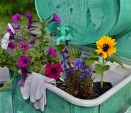 Todavía del jardín vida con las flores hermosas y los guantes protectores Fotografía de archivo libre de regalías