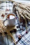 Todavía del otoño composición de la vida con la taza de té y las espiguillas en fondo a cuadros de la materia textil Foto de archivo